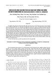 Đánh giá khả năng chịu mặn ở đầu giai đoạn sinh trưởng sinh dưỡng của một số giống khoai sọ (Colocasiaesculenta (L.) Schott var. Antiquorum)