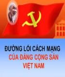 Chuyên đề sinh hoạt chuyên môn Đường lối cách mạng của ĐCSVN: Giá trị văn hóa và giá trị con người Việt Nam trong quá trình công nghiệp hóa, hiện đại hóa