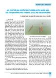 Giá trị lễ hội đua thuyền truyền thống huyện Quảng Ninh gắn với định hướng phát triển du lịch lễ hội tỉnh Quảng Bình