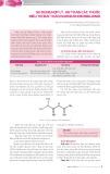 Sử dụng hợp lý, an toàn các thuốc điều trị đái tháo đường nhóm Biguanid