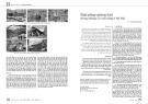 Giải pháp giếng trời trong chung cư cao tầng ở Hà Nội