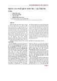 Nghiên cứu chuỗi giá trị dược liệu – cây diệp Hạ Châu
