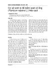 Cơ sở sinh lý để kiểm soát cỏ ống (Panicum repens L.) hiệu quả