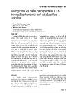 Dòng hóa và biểu hiện protein LTB trong Escherichia coli và Bacillus subtilis