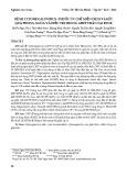 Bệnh cytomegalovirus - thuốc ức chế miễn dịch và kết quả phòng ngừa và điều trị trong ghép thận tại BVCR
