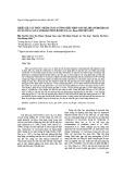 Thiết kế cấu trúc nhằm tăng cường biểu hiện gen mã hóa peroxidase ở cây dừa cạn (Catharanthus roseus (L.) G. don) chuyển gen