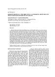 Kênh dẫn truyền NA+ cổng điện áp (NAV) và tính kháng thuốc diệt côn trùng ở muỗi truyền bệnh sốt xuất huyết