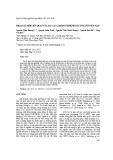 Khảo sát mối liên quan của SLC17A1 rs1165196 với bệnh gút ở người Việt Nam