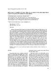 Phân loại và nghiên cứu đặc tính của xạ khuẩn nội sinh YBQ75 phân lập từ cây quế (Cinnamomum cassia Presl)