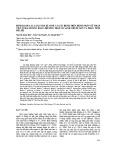 Định danh các loài nấm kí sinh và gây bệnh trên bệnh nhân nữ nhập viện ở Hải Dương bằng phương pháp so sánh chuỗi gen và phân tích phả hệ