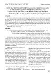 Nhân hai trường hợp nhiễm sán máng (Schistosomiasis) ở thành bàng quang với bệnh cảnh lâm sàng của u bàng quang: Lâm sàng, mô bệnh học, dịch tễ học