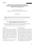 New records of the Dictyocha antarctica Lohmann, Dictyocha crux Ehrenberg and Nitzschia rectilonga Takano species from the sea of Marmara
