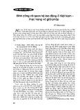Đình công và quan hệ lao động ở Việt Nam - Thực trạng và giải pháp