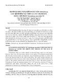 Đánh giá khả năng kiểm soát nấm Alternaria sp. gây bệnh đốm nâu trên lá cây chanh dây bằng chế phẩm Trichoderma atroviride T4