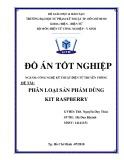 Đồ án tốt nghiệp: Phân loại sản phẩm dùng Kit Raspberry