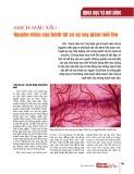 Mạch máu xấu - Nguyên nhân của bệnh tật và sự suy giảm tuổi thọ