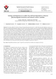 Geology and diagenesis of a zeolitic Foça tuff unit deposited in a Miocene phreatomagmatic lacustrine environment (western Anatolia)