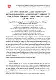 Khả năng nitrit hóa amoni của chủng vi khuẩn Pseudomoonas aeruginosa HT1 phân lập từ nước thải sau biogas của trang trại chăn nuôi lợn ở Hà Tĩnh