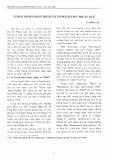 Tương đương dịch thuật và tương đương thuật ngữ