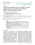 Endothelial-cell inflammation and damage by reactive oxygen species are prevented by propofol via ABCA1-mediated cholesterol efflux