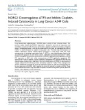 NDRG1 downregulates ATF3 and inhibits cisplatininduced cytotoxicity in lung cancer A549 cells