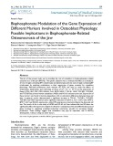 Bisphosphonate modulation of the gene expression of different markers involved in osteoblast physiology: Possible implications in bisphosphonate-related osteonecrosis of the jaw