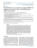 MicroRNA-29a is a key regulon that regulates BRD4 and mitigates liver fibrosis in mice by inhibiting hepatic stellate cell activation