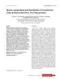 Species composition and distribution of brachyuran crabs in Duyen Hai town, Tra Vinh province