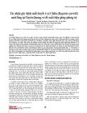 Tác nhân gây bệnh xuất huyết ở cá Chiên (Bagarius yarrelli) nuôi lồng tại Tuyên Quang và đề xuất biện pháp phòng trị