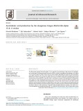 Arachidonic acid production by the oleaginous fungus Mortierella alpina 1S-4: A review