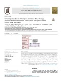Toxicological studies of Orthosiphon stamineus (Misai Kucing) standardized ethanol extract in combination with gemcitabine in athymic nude mice model