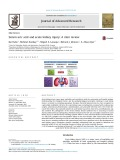 Serum uric acid and acute kidney injury: A mini review