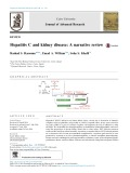 Hepatitis C and kidney disease: A narrative review