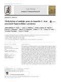 Methylation of multiple genes in hepatitis C virus associated hepatocellular carcinoma
