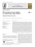Risk assessment of desert pollution on composite high voltage insulators