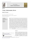 Urinary Schistosomiasis: Review