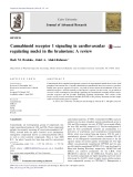 Cannabinoid receptor 1 signaling in cardiovascular regulating nuclei in the brainstem: A review