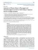 Induction of mitotic delay in pharyngeal and nasopharyngeal carcinoma cells using an aqueous extract of Ajuga bracteosa