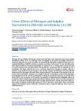Cross-Effects of Nitrogen and Sulphur Starvation in Chlorella sorokiniana 211/8K