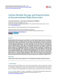 Carbon Dioxide Storage and Sequestration in Unconventional Shale Reservoirs