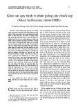 Khảo sát quy trình vi nhân giống cây chuối sáp (Musa balbasiana nhóm BBB)