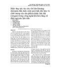 Hiệu ứng xúc tác của vật liệu khoáng dolomite đến hiệu suất quá trình khí hóa và chất lượng của sản phẩm nhiên liệu khí (syngas) trong công nghệ khí hóa tầng cố định nguyên liệu trấu