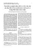 Tìm hiểu sự phát triển chồi in vitro của cây cúc đại đóa (Chrysanthemum indicum L.) trong điều kiện stress mặn