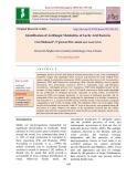 Identification of antifungal metabolites of Lactic acid bacteria
