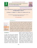 Finger millet (Eleusine coracana G.) based intercropping for food security in Konkan region - A review