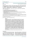 A formulation study of 5-aminolevulinic encapsulated in DPPC liposomes in melanoma treatment