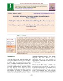 Feasibility of rubber+tea intercropping during immature phase of rubber