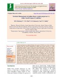 Nutrient management in Indian bean (Lablab purpureus L.) under south Gujarat condition