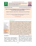 Effect of irrigation management and crop establishment methods on growth, yield, and economics of rice