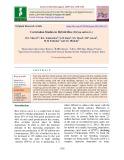 Correlation studies in hybrid rice (Oryza sativa L.)